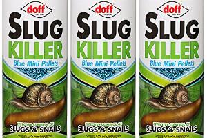 Slug pellet advice