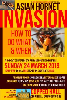The Asian Hornet Invasion @ Copped Hall