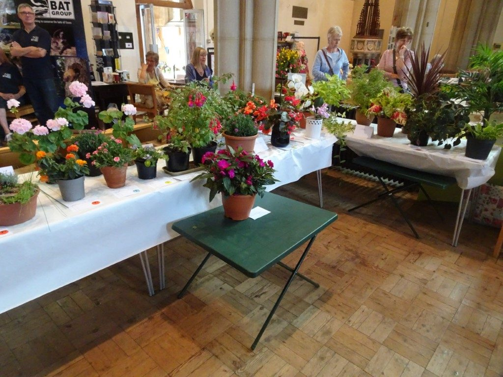Horticultural show tables